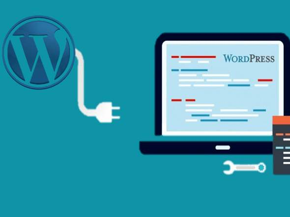 Best WordPress Database plugins