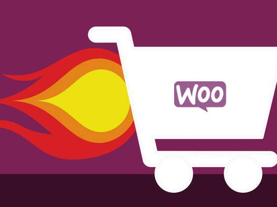 How to Speed Up Your WooCommerce Store?