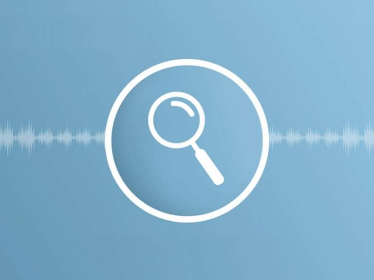 Why is voice search important for your WordPress website?