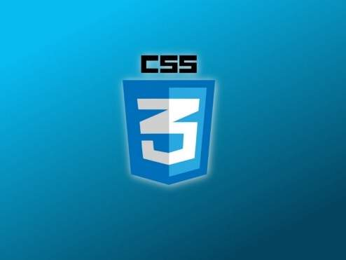 How to use CSS with WordPress?